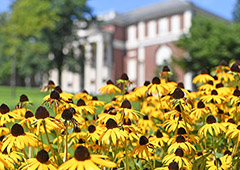 August Blooms across Campus
